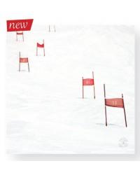 Tableau Slalom 40 x 40
