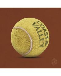 Tableau Balle Tennis 40 x 40