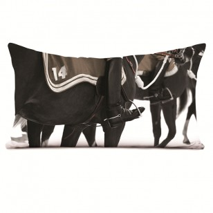 Coussin Cavaliers 40 x 68