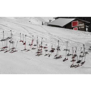 Tableau Skis aux Pieds 60x90