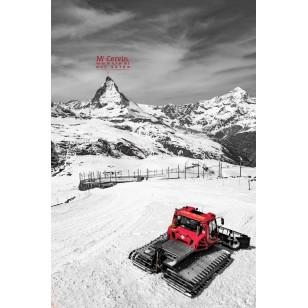 tableau d coration ski club chalet montagne ski vintage. Black Bedroom Furniture Sets. Home Design Ideas