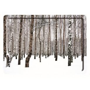 Plateau Forêt 40*30