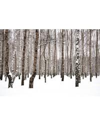 Tableau Forêt 80*120