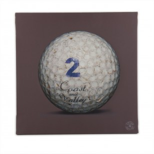 Tableau Golf Ball Marron 2 40 x 40
